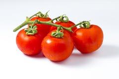 Δέσμη της κόκκινης ντομάτας Στοκ φωτογραφία με δικαίωμα ελεύθερης χρήσης