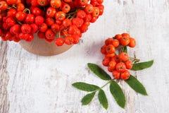 Δέσμη της κόκκινης σορβιάς με τα φύλλα στο αγροτικό ξύλινο υπόβαθρο Στοκ εικόνες με δικαίωμα ελεύθερης χρήσης