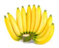 Δέσμη της μπανάνας που απομονώνεται στο άσπρο υπόβαθρο Στοκ Εικόνα