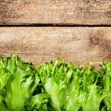 Δέσμη της σαλάτας ικανότητας στο ξύλινο υπόβαθρο Τα τρόφιμα διατροφής και θεραπεύουν Στοκ Εικόνες