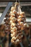 Δέσμη του εγχώριου οργανικού σκόρδου από μια familiy αγροτική ένωση στοκ φωτογραφία