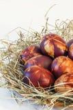 Δέσμη του κόκκινου βαμμένου αυγού Πάσχας που διακοσμείται τις σφραγίδες φύλλων ζιζανίων που τίθενται με με λεπτομέρειες φωλιών σα Στοκ Εικόνα