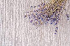 Δέσμη του ξηρού lavender λουλουδιού στο άσπρο υπόβαθρο, φωτογραφία προϊόντων για aromatherapy Στοκ φωτογραφία με δικαίωμα ελεύθερης χρήσης