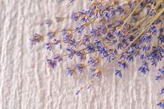 Δέσμη του ξηρού lavender λουλουδιού στο άσπρο υπόβαθρο, φωτογραφία προϊόντων για aromatherapy Στοκ Φωτογραφίες