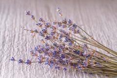 Δέσμη του ξηρού lavender λουλουδιού στο άσπρο υπόβαθρο, φωτογραφία προϊόντων για aromatherapy Στοκ φωτογραφίες με δικαίωμα ελεύθερης χρήσης