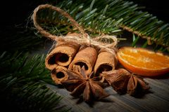 Δέσμη του πορτοκαλιού γλυκάνισου κανέλας δίπλα στον κλάδο πεύκων στοκ εικόνα με δικαίωμα ελεύθερης χρήσης