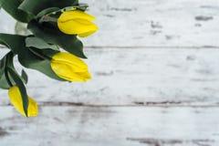 Δέσμη των κίτρινων τουλιπών στον ξύλινο πίνακα Στοκ εικόνα με δικαίωμα ελεύθερης χρήσης
