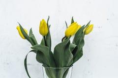 Δέσμη των κίτρινων τουλιπών στο άσπρο υπόβαθρο Στοκ φωτογραφία με δικαίωμα ελεύθερης χρήσης