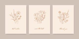 Δέσμη των κομψών προτύπων καρτών που διακοσμούνται με τα άγρια ανθίζοντας λουλούδια, τα χορτάρια και τις ποώδεις εγκαταστάσεις στ διανυσματική απεικόνιση
