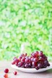 Δέσμη των κόκκινων σταφυλιών στο άσπρο πιάτο, στο πράσινο κλίμα φύλλων Διάστημα για το κείμενο στοκ εικόνα