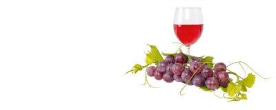 Δέσμη των κόκκινων σταφυλιών και των φύλλων και γυαλί κόκκινου κρασιού στο άσπρο υπόβαθρο Στοκ εικόνες με δικαίωμα ελεύθερης χρήσης