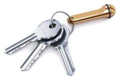 Δέσμη των κλειδιών μετάλλων με το keychain στο άσπρο υπόβαθρο ελεύθερη απεικόνιση δικαιώματος