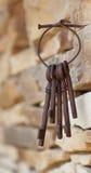 Δέσμη των κλειδιών Στοκ Εικόνα