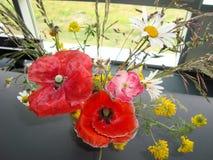 Δέσμη των λουλουδιών λιβαδιών Παπαρούνες chamomiles Στοκ Εικόνες