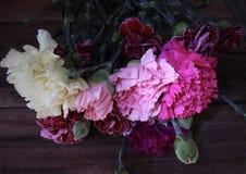 Δέσμη των μικτών λουλουδιών γαρίφαλων στην πλήρη άνθιση στοκ εικόνες