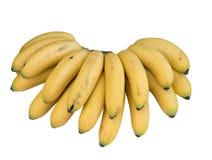 Δέσμη των μπανανών Στοκ εικόνα με δικαίωμα ελεύθερης χρήσης