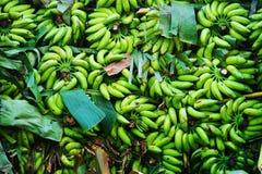 Δέσμη των μπανανών Στοκ φωτογραφία με δικαίωμα ελεύθερης χρήσης