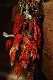 Δέσμη των ξηρών κόκκινων πιπεριών που κρεμούν σε έναν τοίχο Στοκ Εικόνες