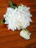 Δέσμη των λουλουδιών στον κήπο το /decoration Στοκ Εικόνες