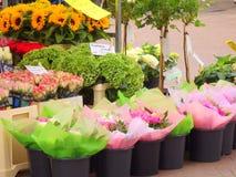 Δέσμη των λουλουδιών στους κάδους Στοκ Εικόνες