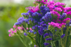 Δέσμη των λουλουδιών στοκ φωτογραφίες με δικαίωμα ελεύθερης χρήσης