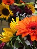 Δέσμη των λουλουδιών Στοκ Φωτογραφία