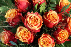Δέσμη των τριαντάφυλλων κονιάκ κερασιών στοκ φωτογραφίες με δικαίωμα ελεύθερης χρήσης