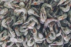 Δέσμη των φρέσκων γαρίδων στην τοπική αγορά ψαριών σε Jimbaran Στοκ Εικόνα
