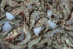 Δέσμη των φρέσκων γαρίδων στην τοπική αγορά ψαριών σε Jimbaran Στοκ Φωτογραφίες