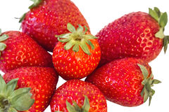 Δέσμη των φρέσκων φραουλών ανοίξεων που απομονώνονται σε Whi Στοκ φωτογραφία με δικαίωμα ελεύθερης χρήσης