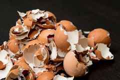 Δέσμη eggshell Στοκ Εικόνες