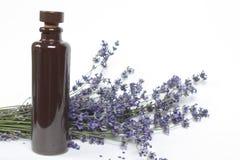 Δέσμη lavender με ένα μπουκάλι του πετρελαίου Στοκ φωτογραφία με δικαίωμα ελεύθερης χρήσης