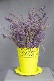 Δέσμη lavender σε ένα δοχείο Στοκ εικόνες με δικαίωμα ελεύθερης χρήσης
