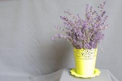 Δέσμη lavender σε ένα δοχείο Στοκ φωτογραφία με δικαίωμα ελεύθερης χρήσης