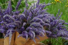 Δέσμη lavender στο έγγραφο τεχνών Στοκ εικόνα με δικαίωμα ελεύθερης χρήσης