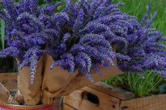 Δέσμη lavender στο έγγραφο τεχνών Στοκ Φωτογραφίες