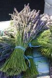 Δέσμη lavenders Στοκ εικόνα με δικαίωμα ελεύθερης χρήσης