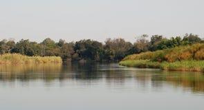 Δέλτα Okavango Στοκ Φωτογραφίες