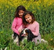 δίδυμα αδελφών σκυλιών Στοκ Εικόνες