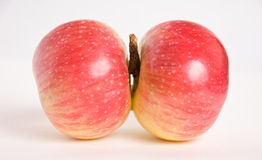 δίδυμα μήλων Στοκ Εικόνες