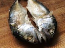 Δίδυμα φρέσκα ψάρια σκουμπριών στον ξύλινο τεμαχίζοντας πίνακα πρίν μαγειρεύει στοκ εικόνα