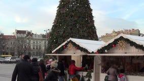 Δίκαιος στάβλος χριστουγεννιάτικων δέντρων απόθεμα βίντεο