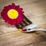 Δίκρανο και πορφυρό λουλούδι στοκ εικόνα