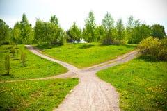 Δίκρανο στο δρόμο στο πάρκο και τις πικραλίδες Στοκ Φωτογραφίες