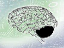 Δίκτυο εγκεφάλου Στοκ εικόνα με δικαίωμα ελεύθερης χρήσης