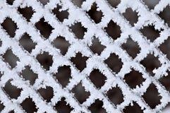 δίκτυο φραγών hoarfrost Στοκ Εικόνα