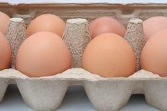 δίσκος αυγών Στοκ φωτογραφία με δικαίωμα ελεύθερης χρήσης
