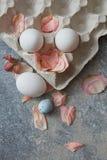 Δίσκος εγγράφου με τα αυγά Στοκ Εικόνα