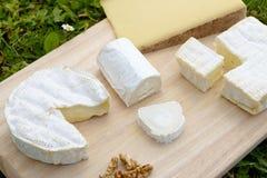 Δίσκος με τα διαφορετικά γαλλικά τυριά Στοκ Φωτογραφίες