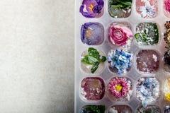 Δίσκος με τα παγωμένα λουλούδια στους κύβους πάγου στοκ εικόνα
